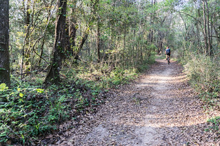 Lake Overstreet Trail, Alfred B. Maclay Gardens State Park, Tallahassee, Fla., March 2019 | by JenniferHuber