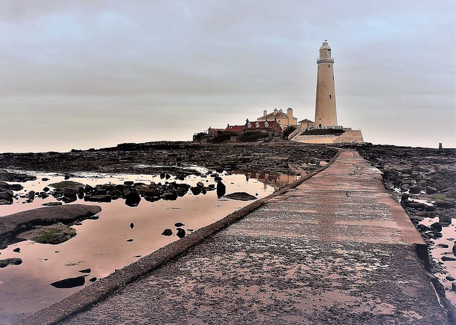 8,888th Flickr Upload - St. Mary's Lighthouse