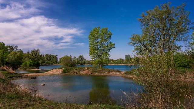 Spring at the lake | SONY ⍺7RII & Sigma FE 1.4/24 Art