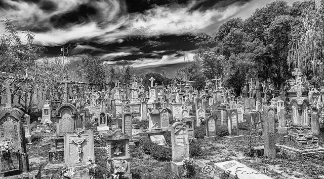 Busca los nombres  en las lapidas - Look for the names  the headstones