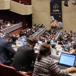 BRS COPs 2019 DAY 5 - May 3, 2019, Geneva, Switzerland