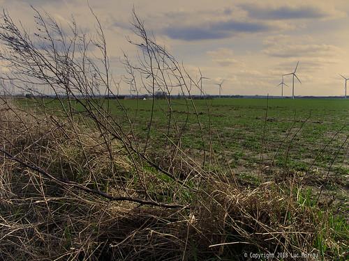 belgium brabantwallon builtin camera countryside landscape lens places samsung villerslaville