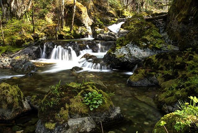 creek-5916_8