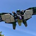 The Vulture by socalbricks