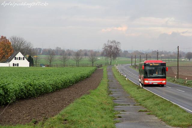 Bunte Buswelt - Rommerskirchen