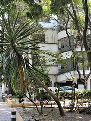 Mexico City no. 185 (30 March 2019)