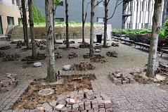Plaza Renovation