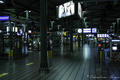 Amsterdam - Schiphol Airport in the small hours . .