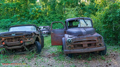 Harvey's Ford Truck Collection