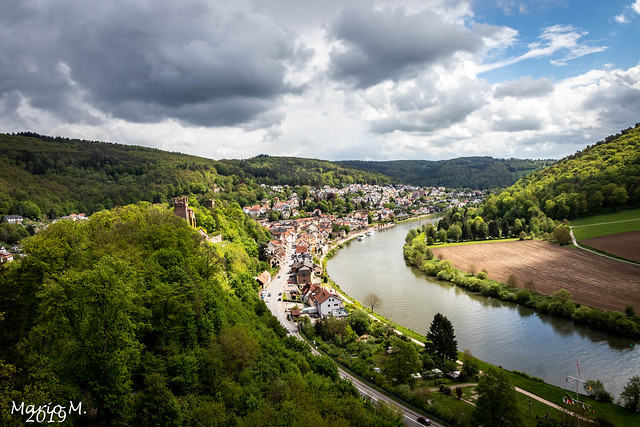 Blick auf Neckarsteinach