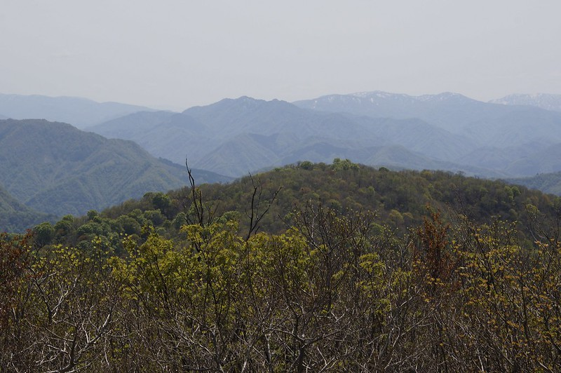 Mt. OKUSHISHIKUYAMA