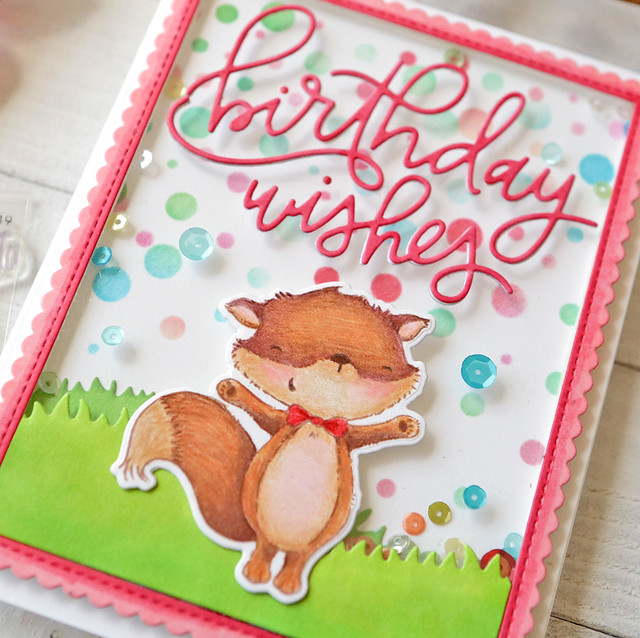 birthday wishes close up