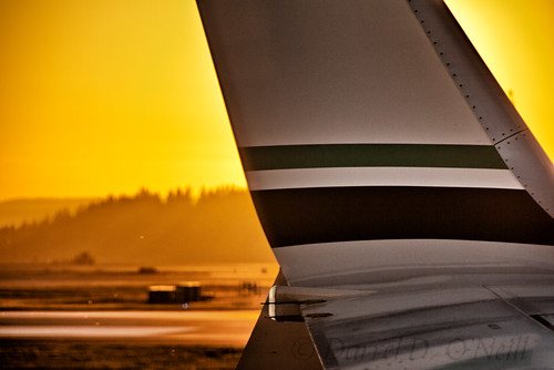 aircraft airplane jet wing sunset airport tarmac seatac seattle washington usa yellow golden white green black