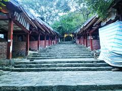 Empty path to a pagoda