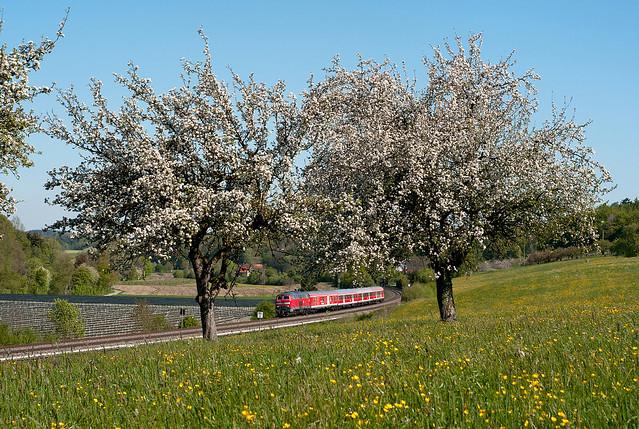 """""""Fahrrad-Express"""" bei Meckenbeuren"""