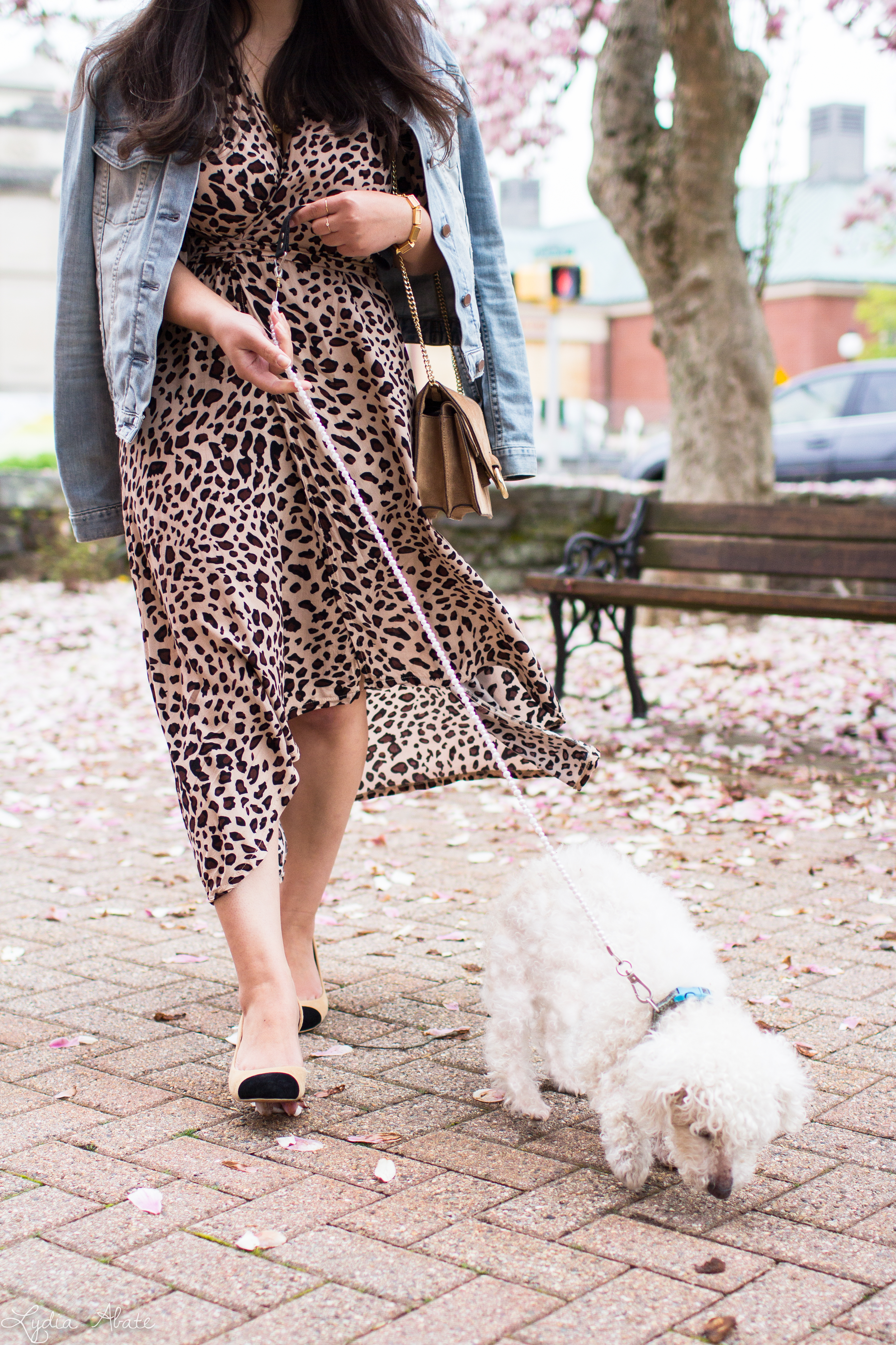 leopard wrap dress, denim jacket, suede ring bag, toe cap pumps, bichon-7.jpg