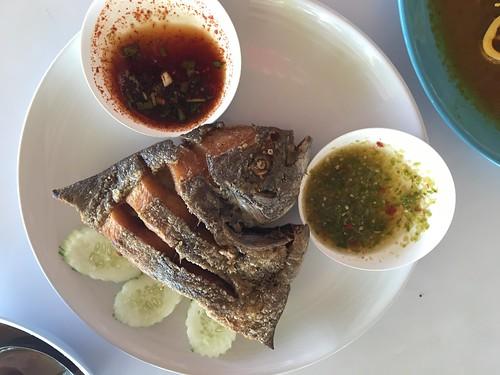 コサムイ ローカルシーフードランチ koh samui seafood lunch