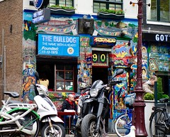 Amsterdam coffee shop?the Bulldog