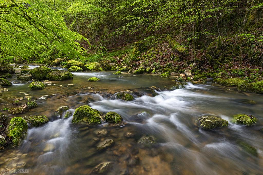 The river - Gorges de Pichoux
