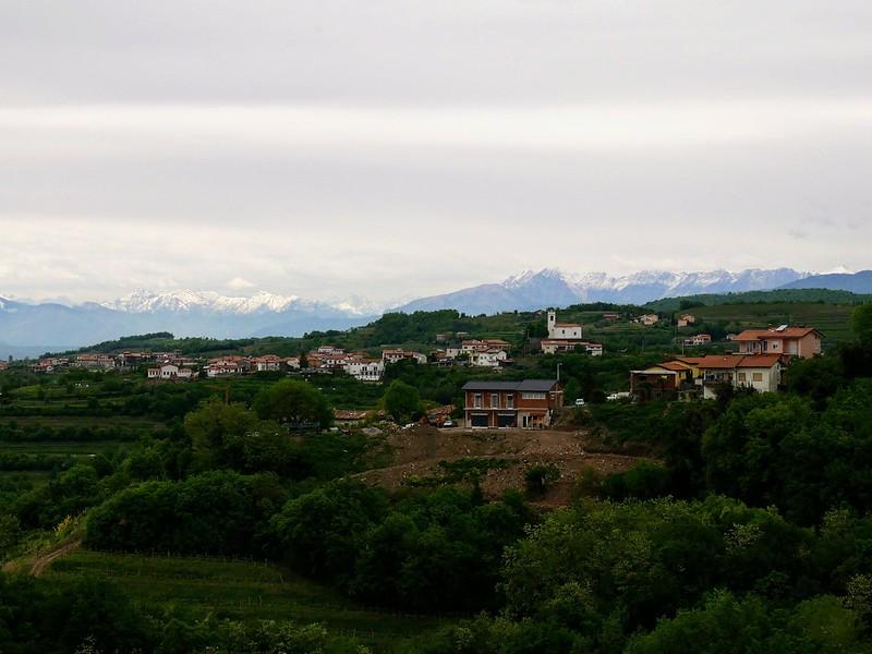 Slovenia viinitilat