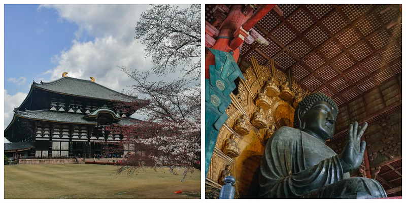 KANSAI ITINERARY - TODAIJI TEMPLE