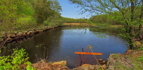 smack53 mahlondickersonreservation weldonbrooklake jeffersontownship newjersey lake water trees pond green springtime spring canon powershot sx150is canonpowershotsx150is panorama