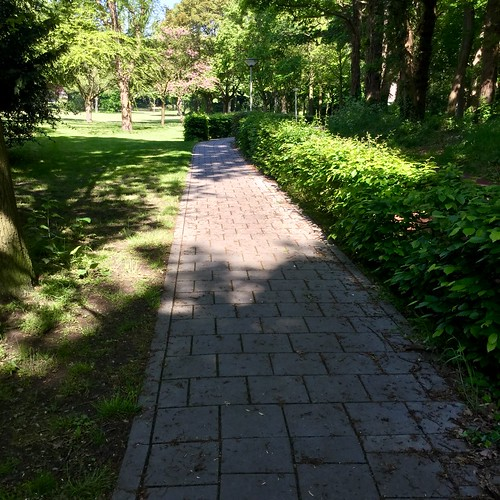 Oscar van Hemelpark