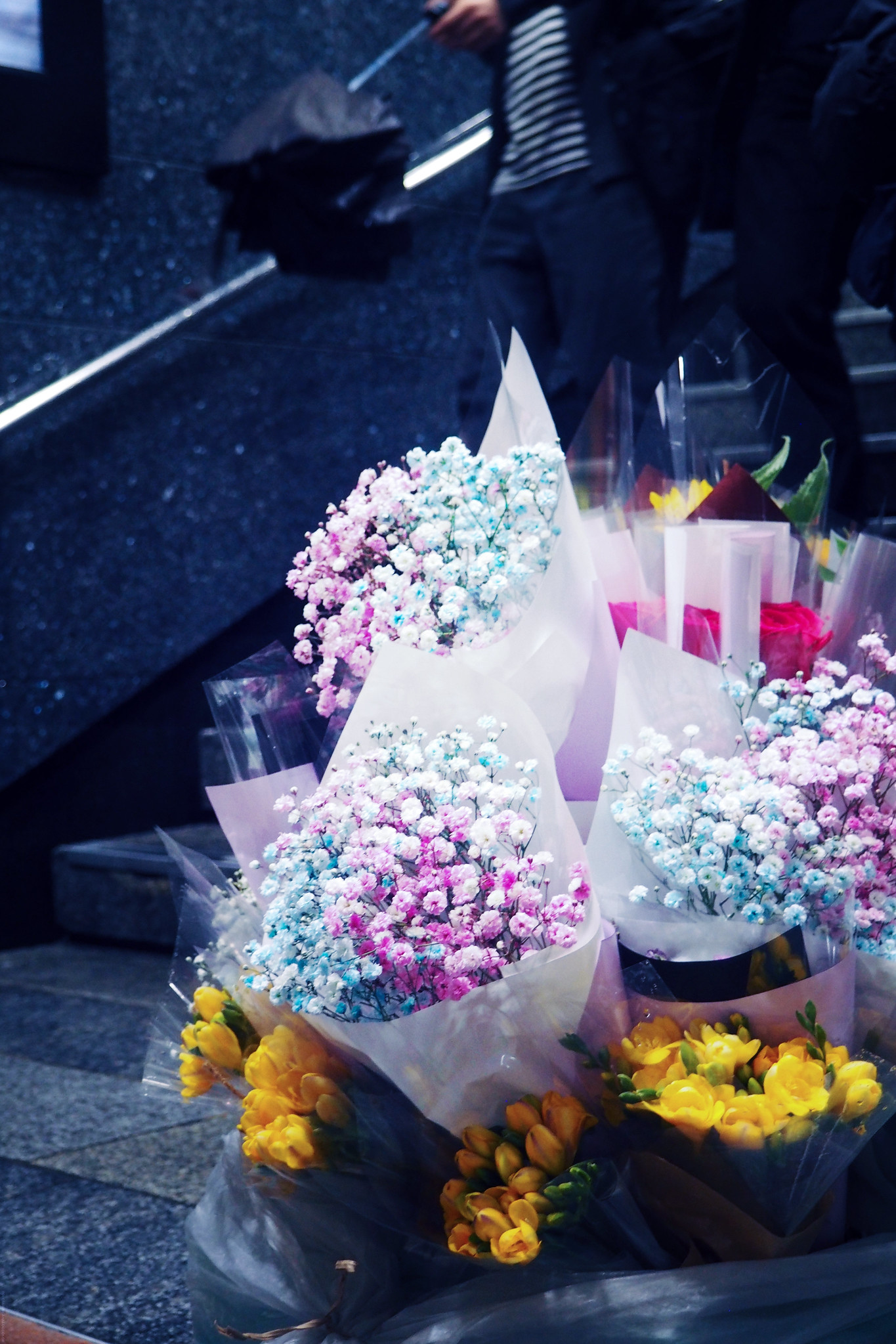 Lilac and Powder Pink Dried Flowers Seoul South Korea_effected