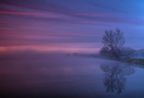 2019 may kevinpovenz westmichigan michigan ottawa ottawacounty ottawacountyparks maplewoodpark sunrise sun blue red tree reflection early earlymorning canon7dmarkii foggy fog outdoors outside