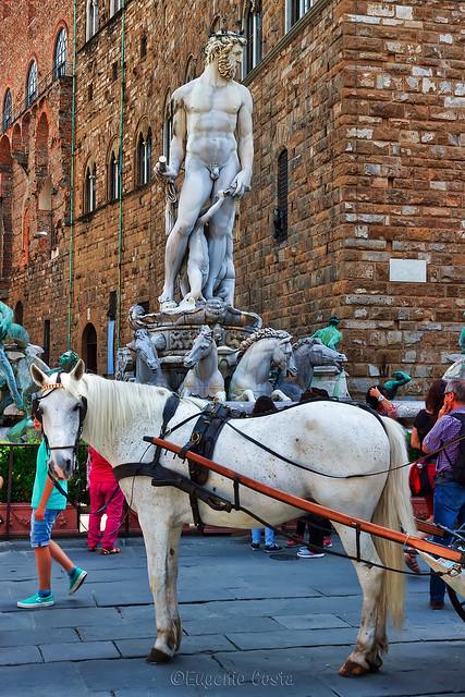 """""""Il Biancone"""" e il cavallo - Il"""