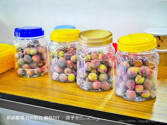 新峰農場 台中新社 醃桃DIY 11
