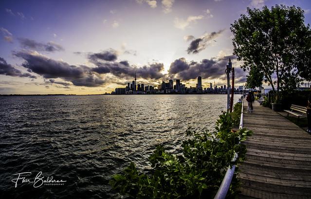 Toronto view from Jennifer Kateryna Koval's'kyj Park