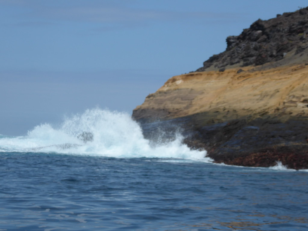 Galapagos Islands April 2019