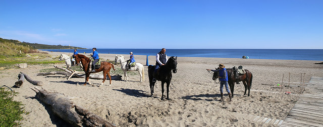 Horse riding at La Alcaidesa beach