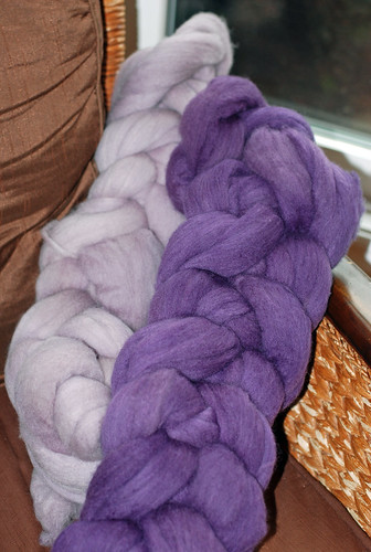 Two dyed braids of Falkland wool top with Logwood by irieknit