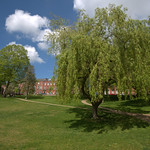 Willow at Winckley Square, Preston