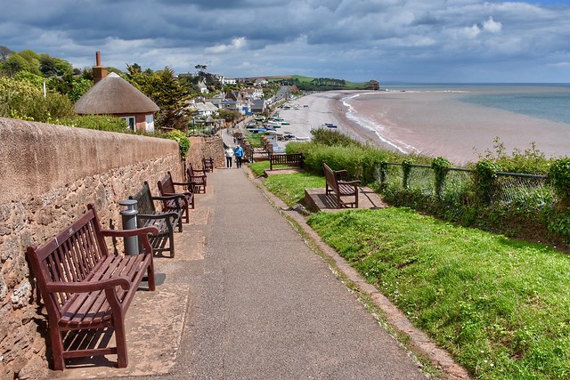 Budleigh Benches