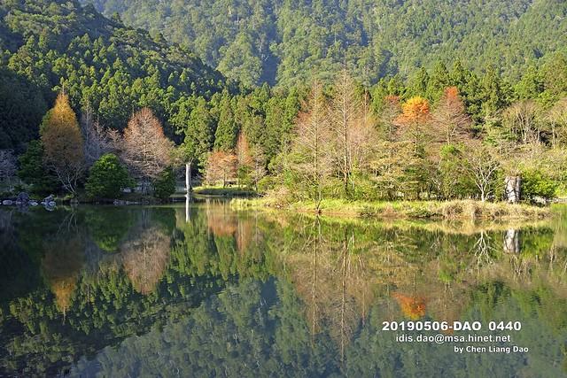 20190506-DAO_0440 秋天森林湖景的顏色