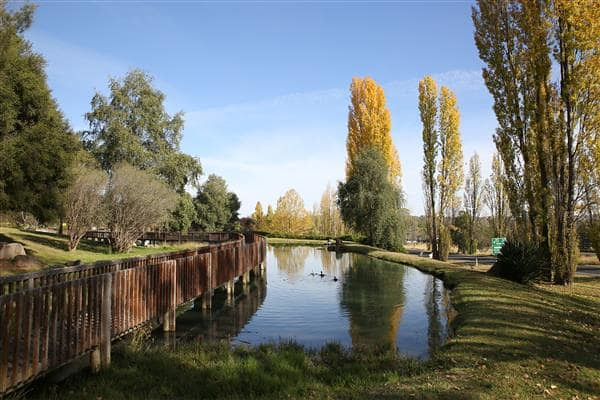 top 50 places to visit in Armidale