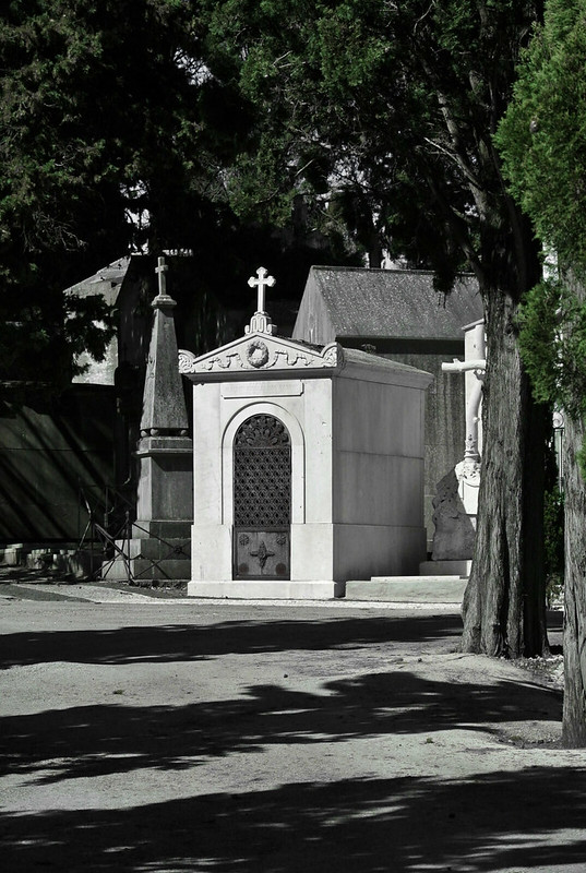 Lisbon_2019_598
