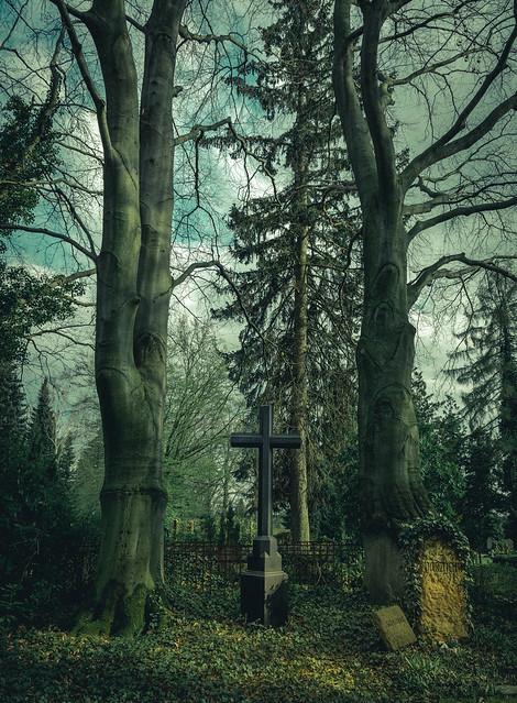 Kreuz und Bäume