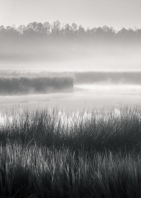 A Winter Fog