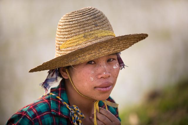 Birmanie: femme des rizières.