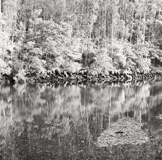 Reflections on the river 2