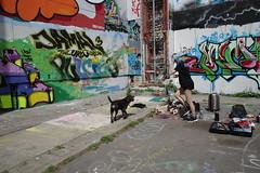 #Teufelsberg #streetart #graffiti #RicohGR #RicohGR3
