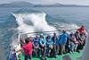 Bootsrundfahrt um die Halbinsel Sirmione