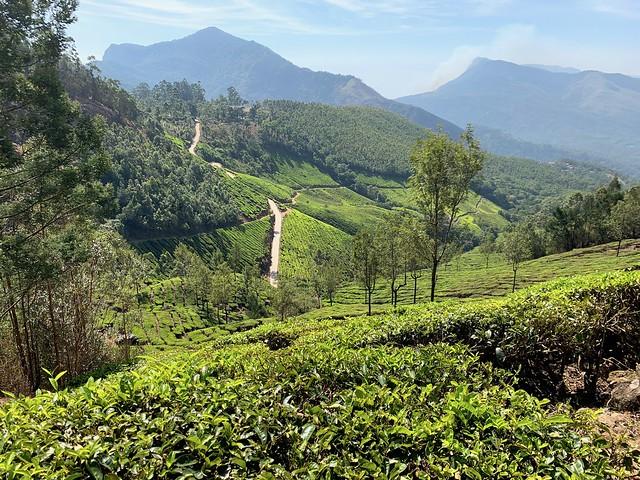 Kerala, India 2019 283