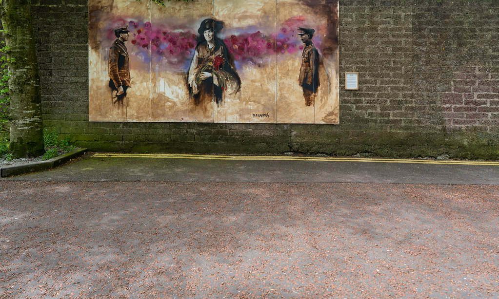 STREET ART MEMORIAL - MARDYKE WALK CORK [ KATE J