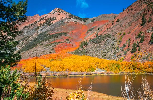 Eastern Sierra Fall Foliage California Fall Color! North Lake Bishop Creek Clouds! High Sierra Autumn Aspens Red Orange Yellow Green Leaves! Sony A7R II & Carl Zeiss Sony Vario-Tessar T* FE 16-35mm f/4 ZA OSS Lens! Elliot McGucken