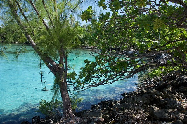 Fakarava lagoon 2